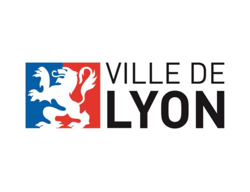 Fête des Lumières de Lyon 2017